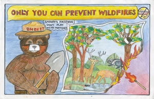 A poster featuring Smokey Bear
