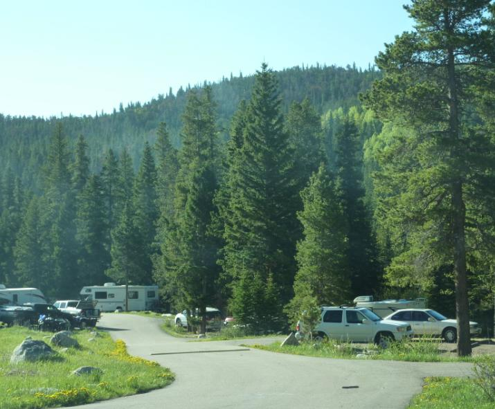 Photo of Camp Dick showing campsites in dense forest