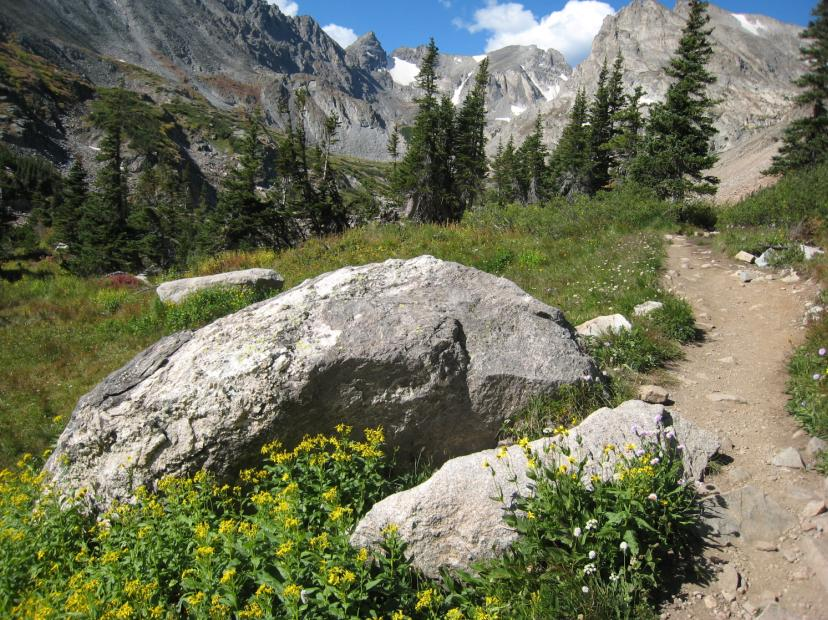 Photo of the Pawnee Pass Trail in August with a flowers and large rocks