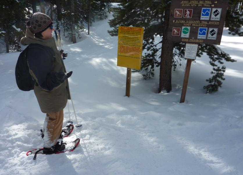 Photo of trails on National Forest above the ski runs showing signs and trails in deep snow