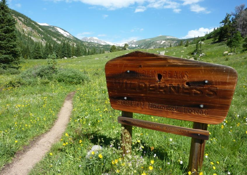 Photo of the Indian Peaks Wilderness sign located in a meadow of wildflowers with snow-capped peaks