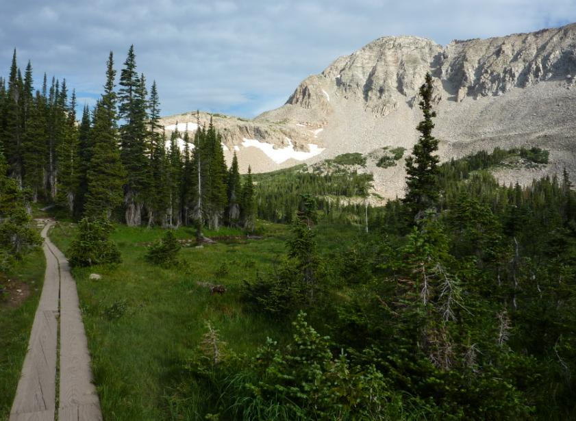 Image of a boardwalk section of the Mitchell Lake Trail with rocky slopes and pine trees