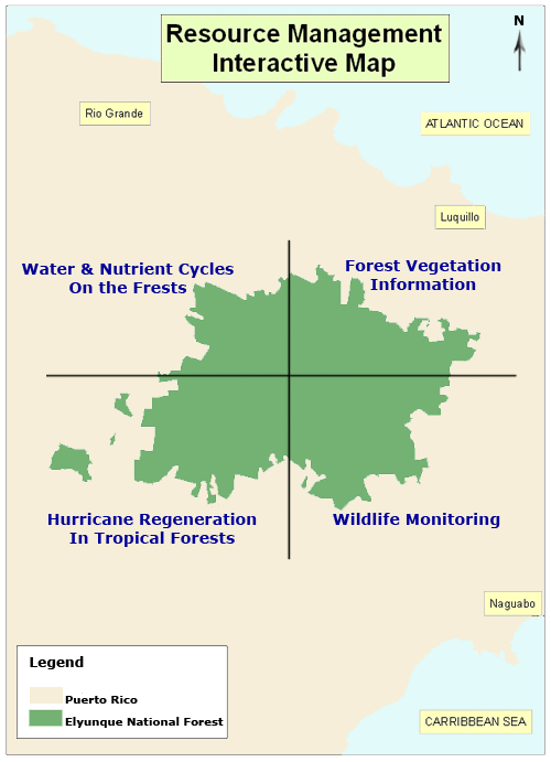 Interactive map of El Yunque National forest linking to Water & Nutrient Cycles, Forest Vegetation, Hurricane Regeneration, Wildlife Management