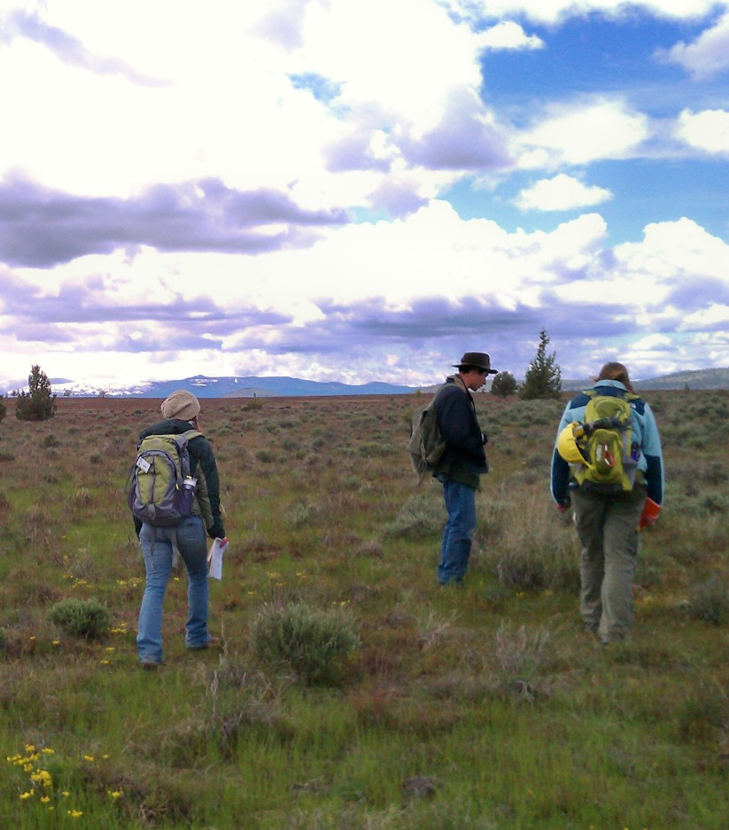 Volunteers walk many miles per day when doing plant surveys.