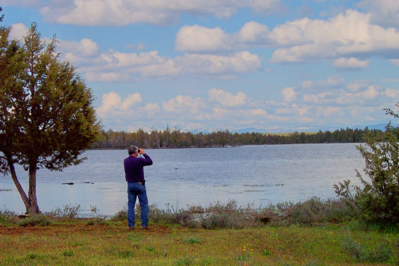 A bird watcher searches the shore with binoculars at Reservoir C.