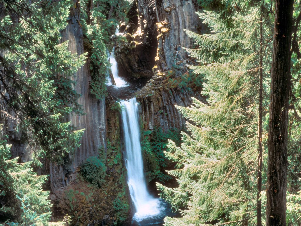 Photograph: Waterfall cascading down mountainside.