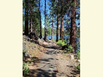 A paved trail through the pines follows the east shoreline of Blue Lake.