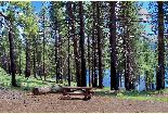 A picnic talbe sits near the shore of Blue Lake under tall pine trees.