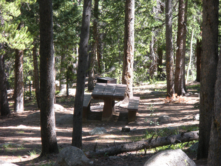 A photo of a picnic table and a fire grate at Chicago Forks picnic ground.