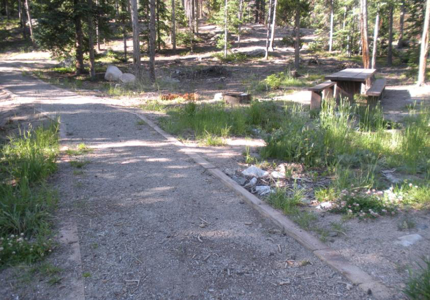 Wheelchair accessible path to one of the picnic tables at Big Bend picnic ground.