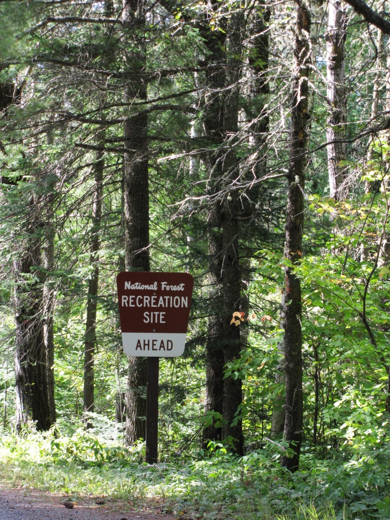 A signpost under pines directs you to a recreation site