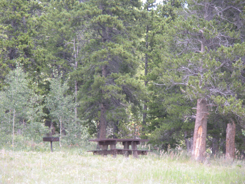 A photo of a picnic table and a fire grate at Cold Springs Picnic Area.
