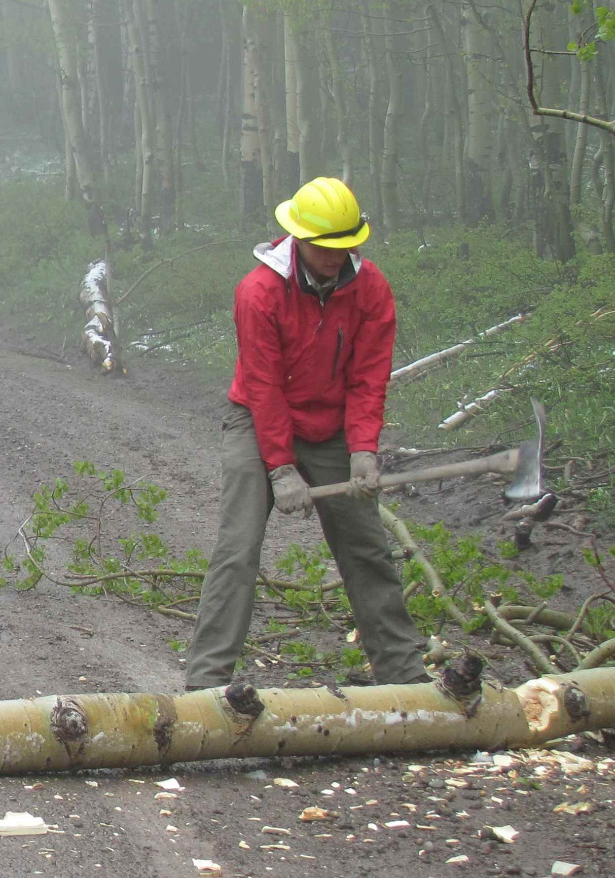 young man chopping log on road