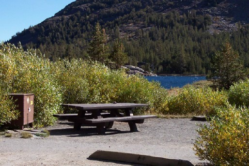 A typical campsite at Tioga Lake Campground