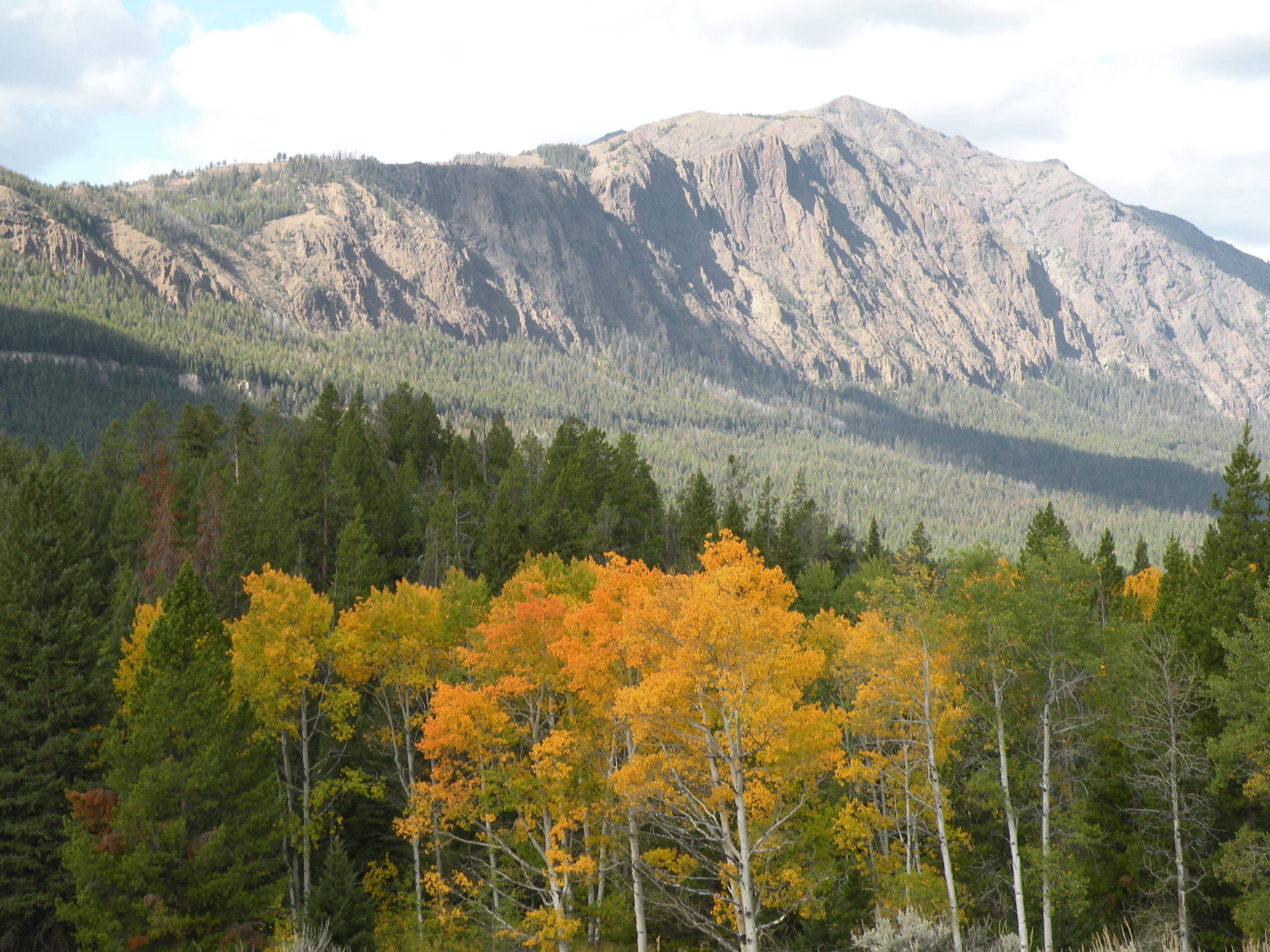 Photograph of fall colors from Highway 296 looking south