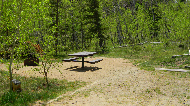 One of the campsites at Bellaire Lake Campground, surrounded by beautiful aspen and pine trees.