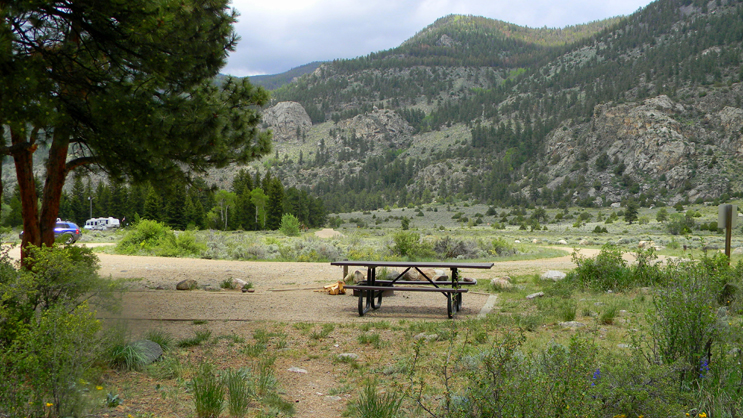 One of the campsites at Big Bend, surrounded by a sagebrush, open conifer forest, and wildflowers.
