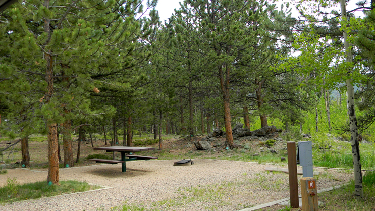 Campsite number ten surrounded by ponderosa pine and aspen trees. Presence of electricity hookup.