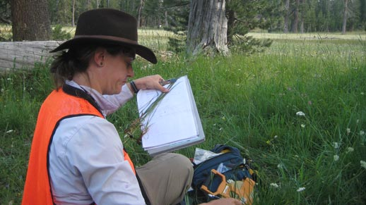 A woman maps Fens in the Parks Creek area near McCloud
