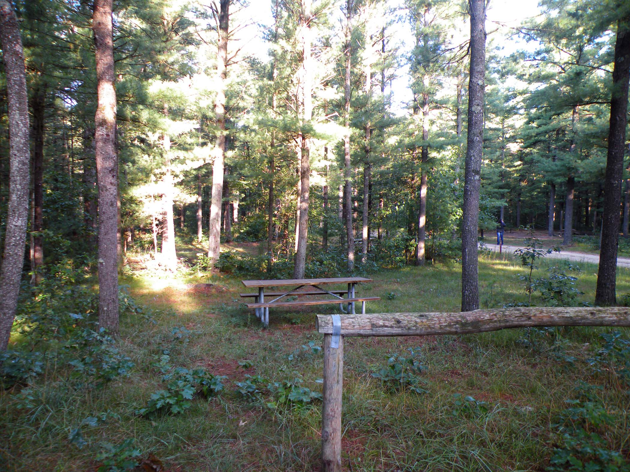 Marzinski Campground site - shows picnic table and hitching post.