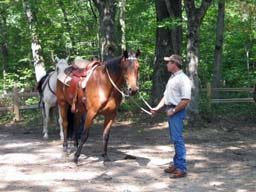 Hungerford Recreation Area horse trailhead and trailcamp area.