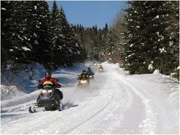 Snowmobiling on the Huron-Manistee National Forests