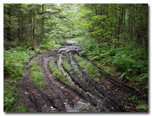 Ruts caused by vehicles on wet and muddy roads.