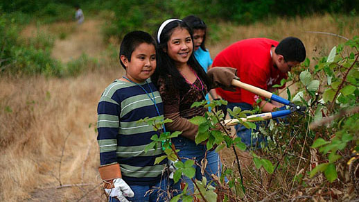Several youth hold shears while cutting shrubs outside.