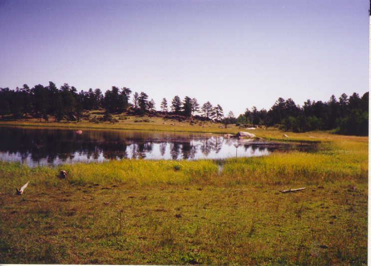 Visitors are greeted to one of Molly Lake's views.