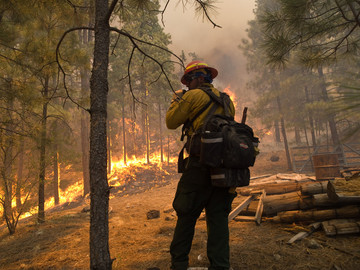 Forest Service fireman evaluating forest fire