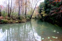 Lick creek kentucky