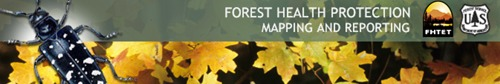 Graphic of Foresthealth.info webpage banner