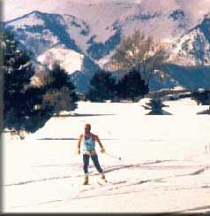 Photo of Cross Country Skiing