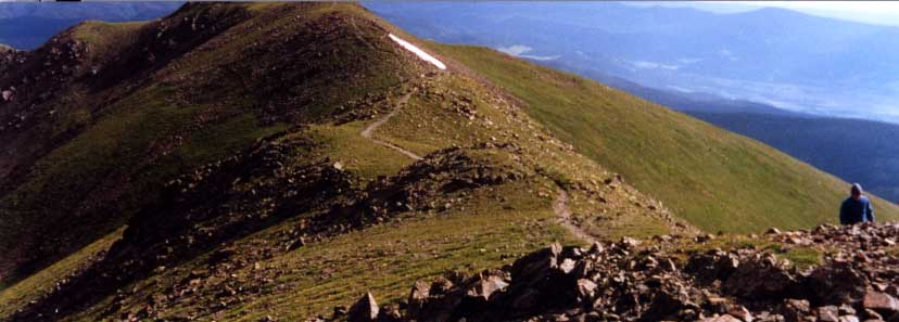 Photo of wheeler peak trail.