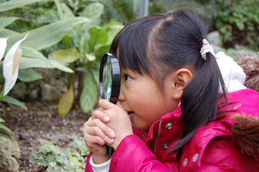 phot of little girl looking through a magnifying glass at a plant