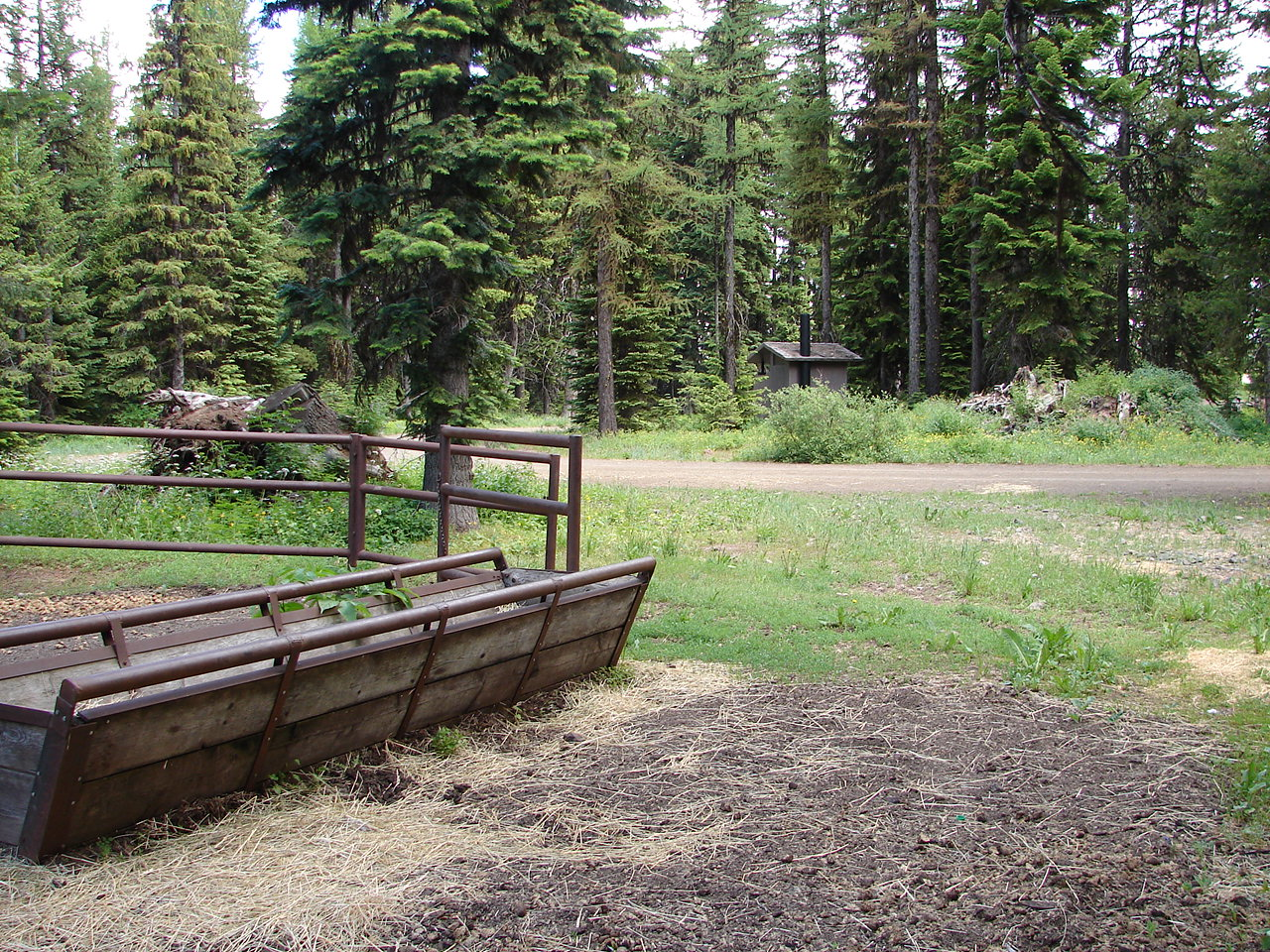 View of a livestock feeding trough with pine trees in background