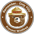 Remember ... Only You Prevent Wildfires