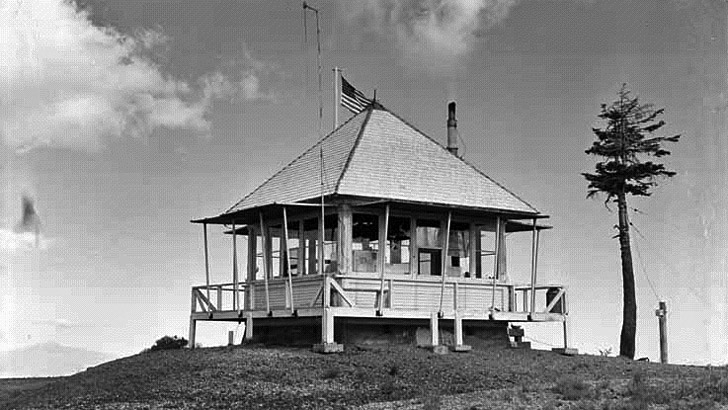 Little Mt. Hoffman lookout in 1954. A fairly large building sits on a hill next to a tree