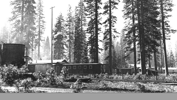 The Pondosa Camp logging camp in 1938. Several building are nestled under some tall trees