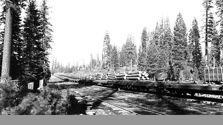 At Pondosa Camp in 1938. Shown is a train loaded with logs