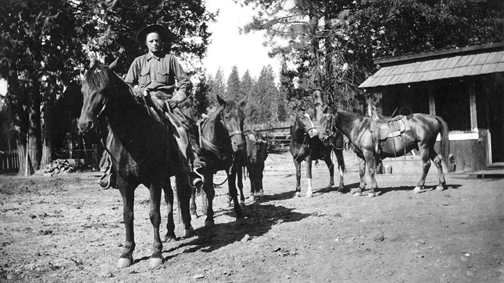 One Ranger and several pack horses stand near a building in the forest in 1924