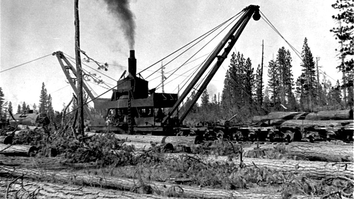 A steam skidder and log loader mounted on a railroad car processes logs in 1923