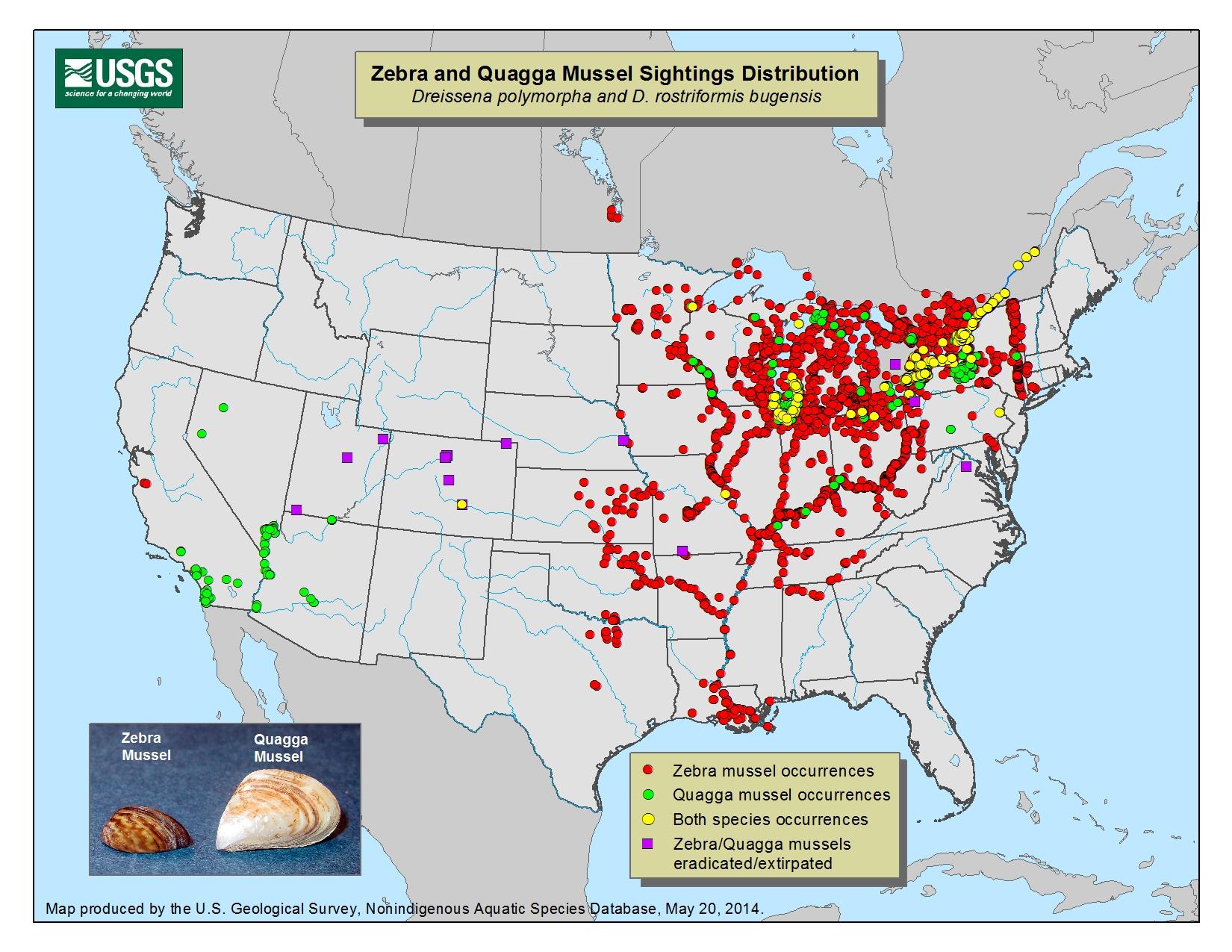 Region  Resource Management - Us map 4 regions