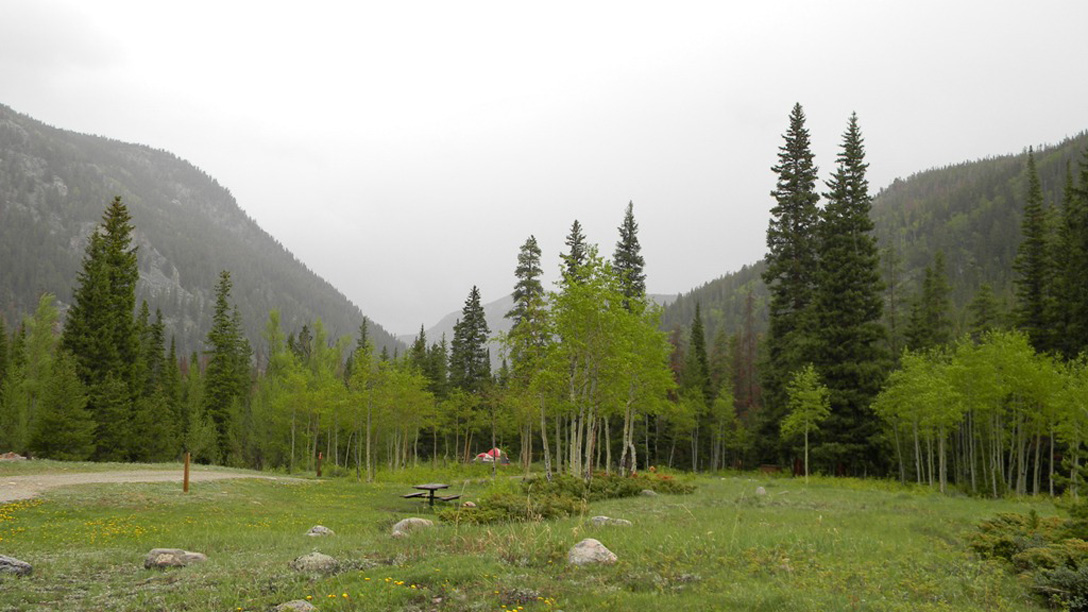 A campsite at Aspen Glen, surrounded by aspen and mixed conifer trees. A tent is in the background.
