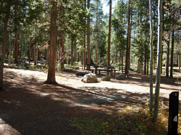 Campsite number 4 with picnic table and fire grate, surrounded by lodgepole pine forest.
