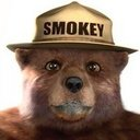 A picture of smokey bear