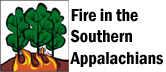 Fire in the Southern Appalachians