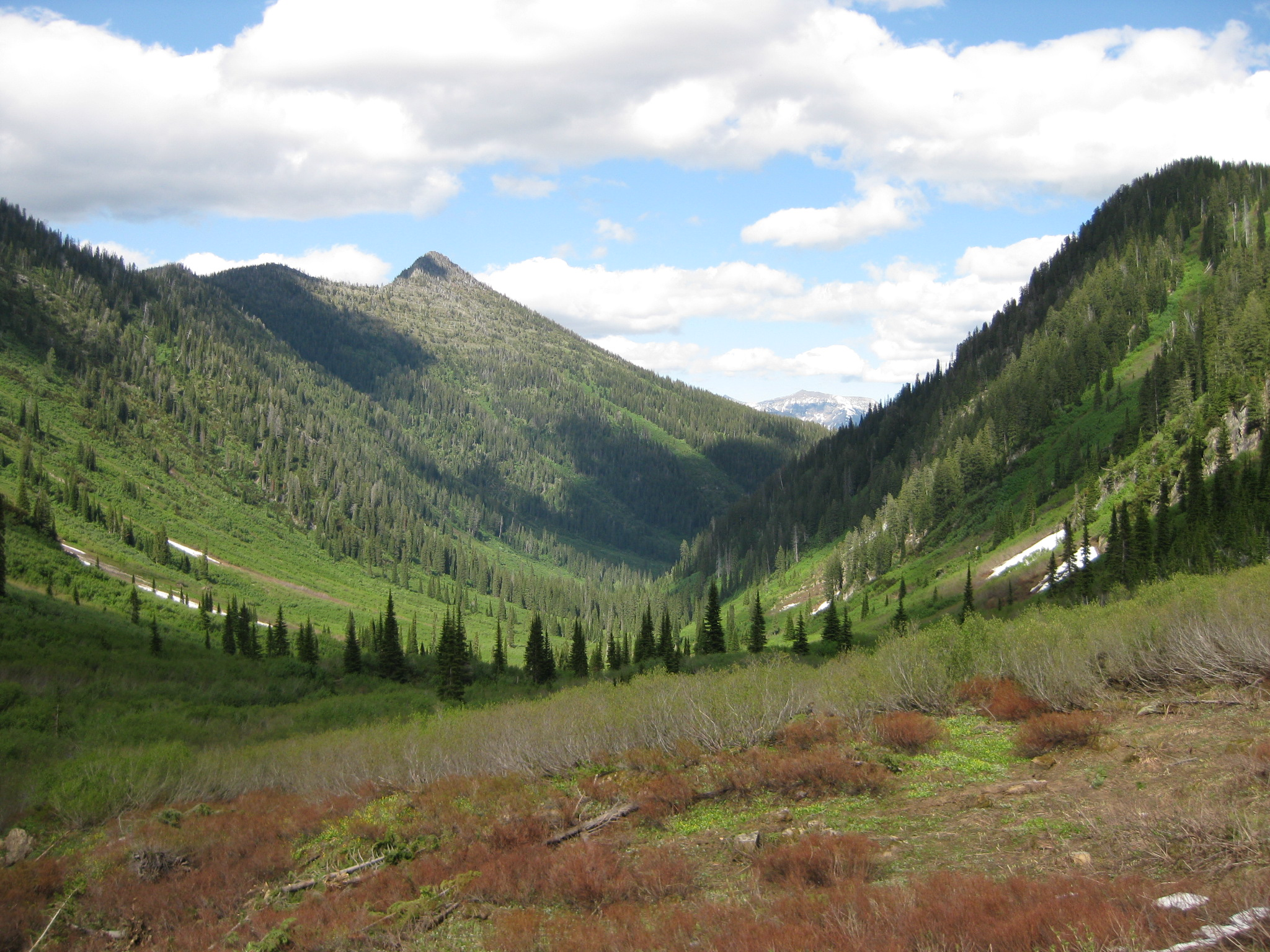 a view of mountains on the Hungry Horse Ranger District