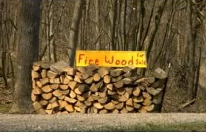 Link to the Don't Move Firewood Video
