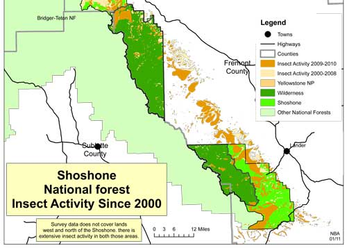 Map of the damage done by bark beetles in the Shoshone since 2000
